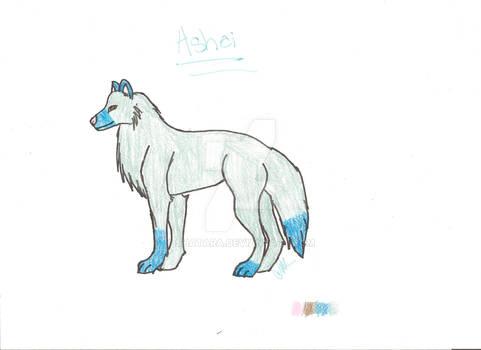 Ashei