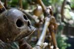 Skullduggery by metalmeister5582