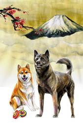 Kai-Ken and Shiba-Inu by Emushi