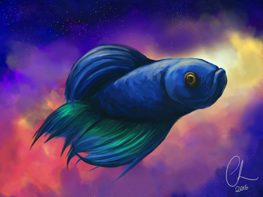 Space Fish | a fish floating in space youtube, space fish