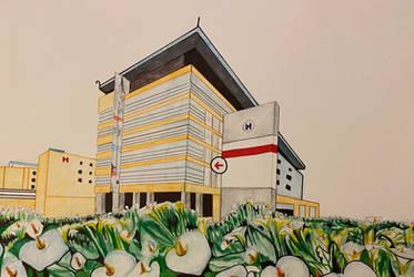 Peter Lougheed Centre