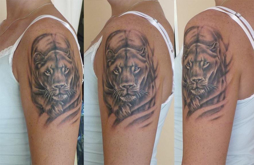 Lioness Tattoos: Lioness Female Shoulder Tattoo By MarinaAlex On DeviantArt