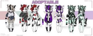 ADOPT AUCTION CAT (OPEN)