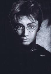 Harry Potter by S2olen