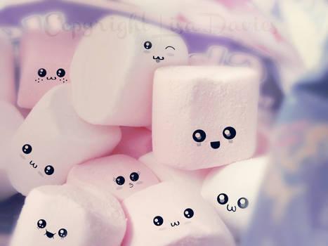 Cute mellows