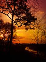 Beautiful life by ziggy90lisa
