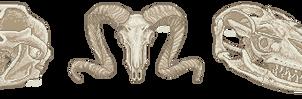 [Pixel] Assorted Skulls