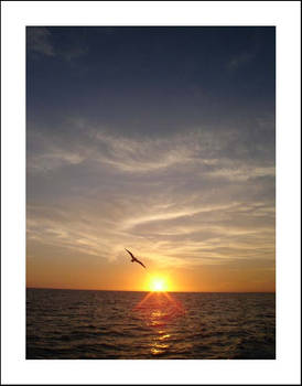 s.i.g.h. sunset 04