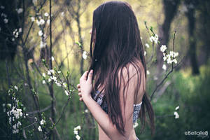 Hidden by bellalleb-photo