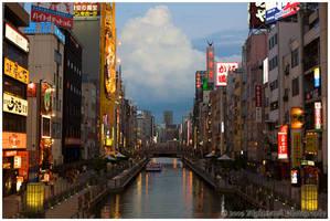 Osaka by nighthawk663