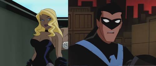 Bruce Timm Gotham Dark Birds!