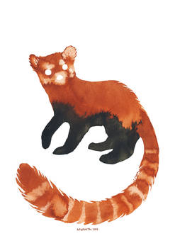 Ink Red panda
