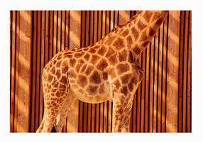 Giraffe Oh by MagicWorld