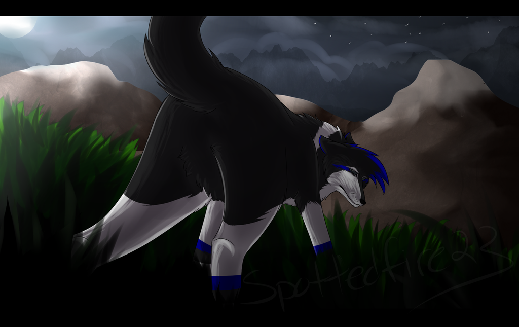 Through the Dark -CO- by Spottedfire23