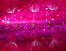 Pretty in Pink by Bimmi1111