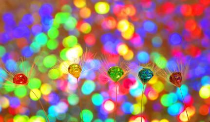 Rainbow Wishes by Bimmi1111