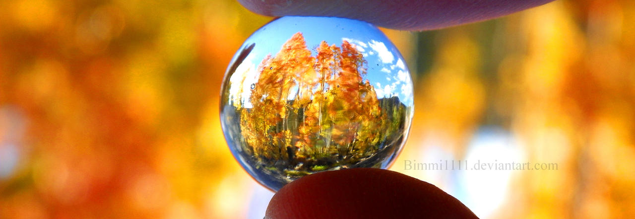 Autumn Refracted by Bimmi1111
