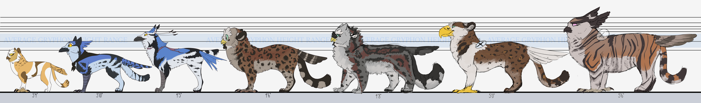 Bluebell Character HEIGHT CHART by Quailheart