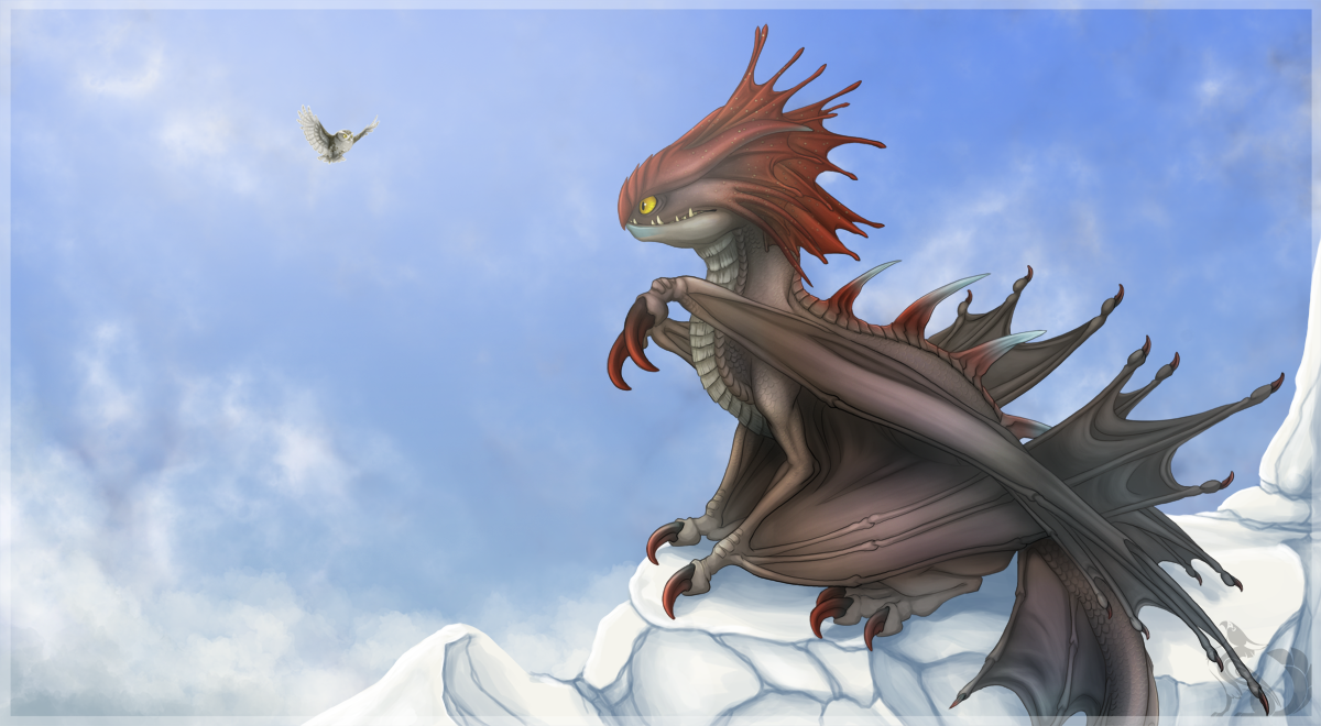 How to train your dragon cloudjumper by isvoc on deviantart owl and dragon by chaluny ccuart Image collections