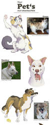 Pet's character 01 by Chaluny