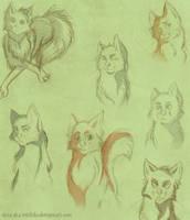 sketch: warrior cats by Sleza-aka-Michiko
