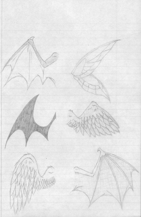 how i draw wings by nyabunny605 on deviantART