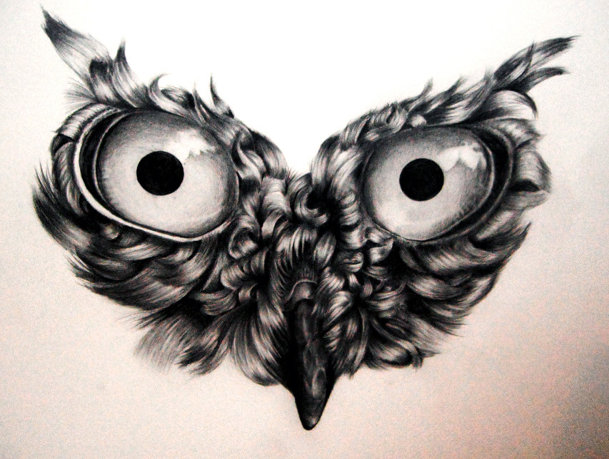 Owl Drawing WIP (Stage 2) by icee-bleu