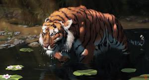 Turan Tiger (Panthera tigris virgata)