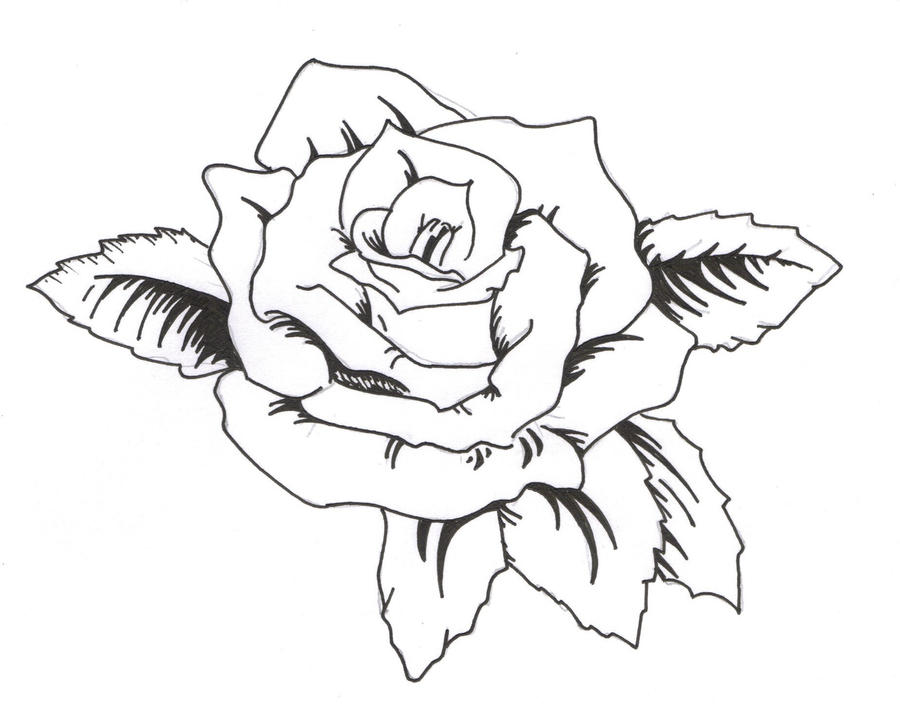 Line Drawing Rose Tattoo : Rose tattoo by the thword on deviantart