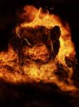 Burning Bridges by Kaydeniro