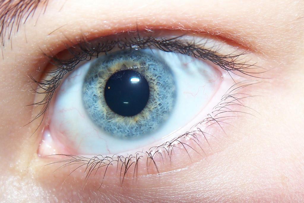 Eye  by sammelizabethh
