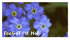 forget me not stamp by sicklilthings