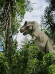 Tyrannosaurus Rex at the zoo