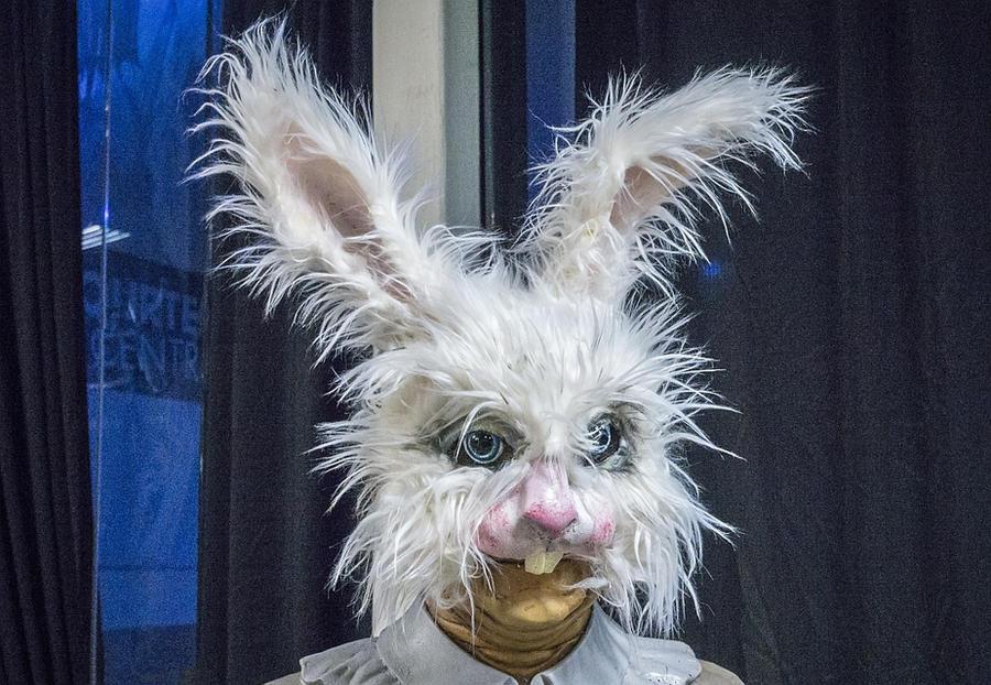 Scruffy Bunny by Lemondjinn