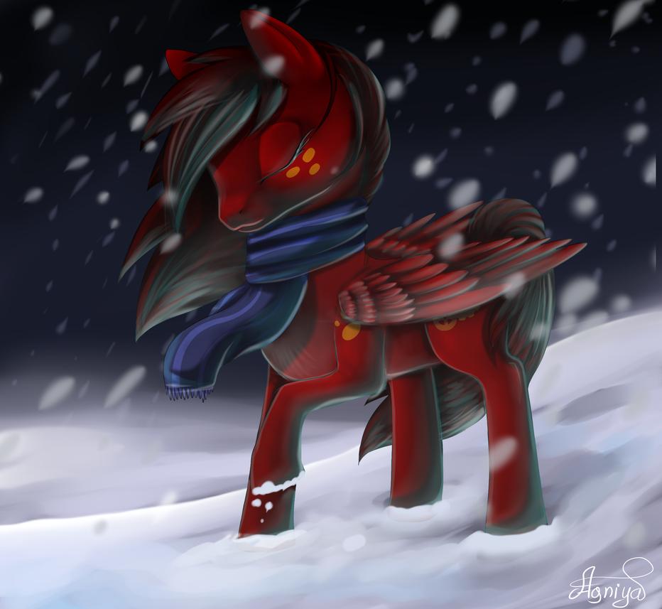 COM: Pony by Agniya-fox