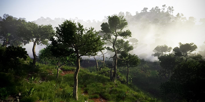 Misty Paradise by sethlebatard