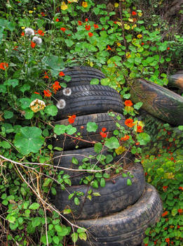 Still life with tyres
