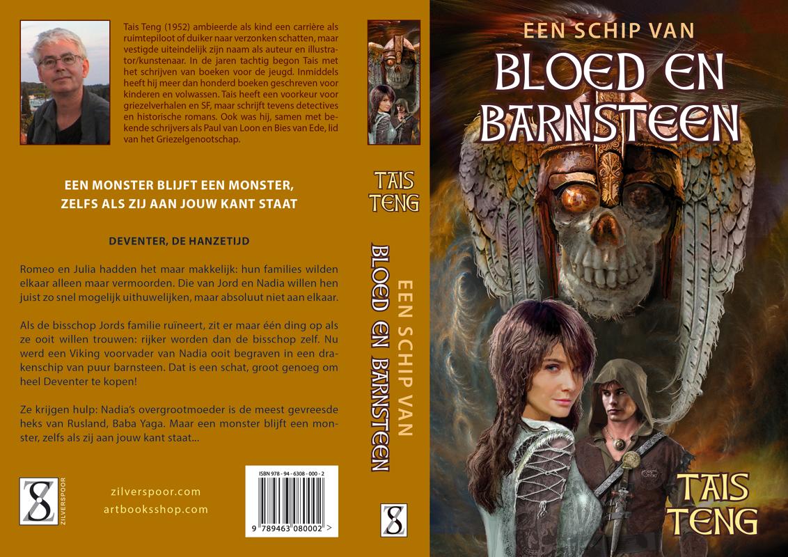 Cover for EEN SCHIP VAN BLOED EN BARNSTEEN