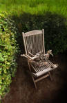 The Nisse's chair