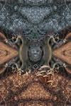 Autumn's eerie toadstool grin