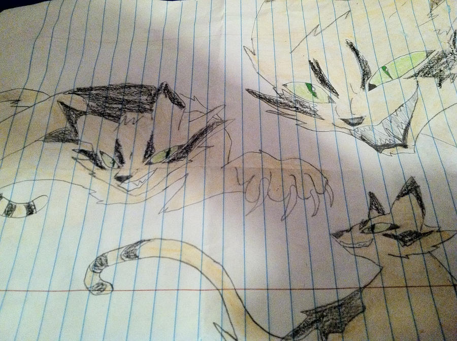 SSS warrior cats can art, LONGTAIL! by gusbucket