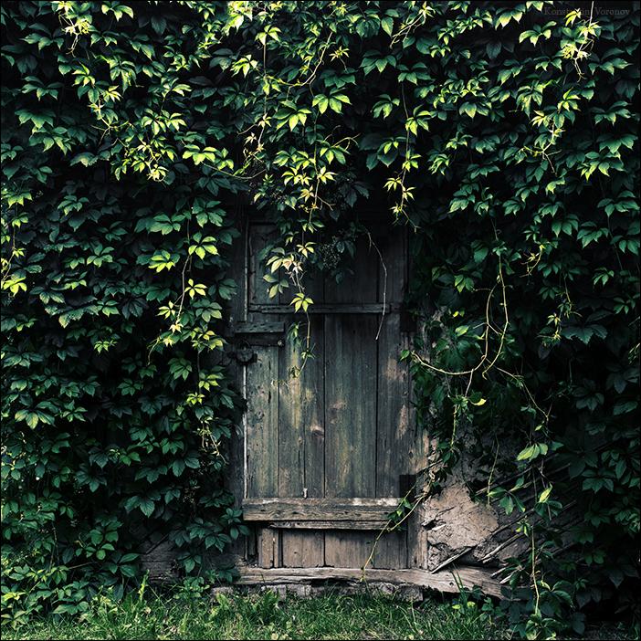 Forgotten door by KARRR ...  sc 1 st  KARRR - DeviantArt & Forgotten door by KARRR on DeviantArt