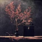 Autumn on my table by KARRR
