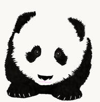 Panda by DragonDew