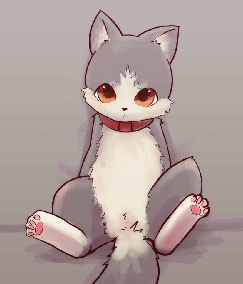 gato by Apricolor