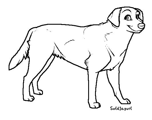 dog template by soldjagurl on deviantart