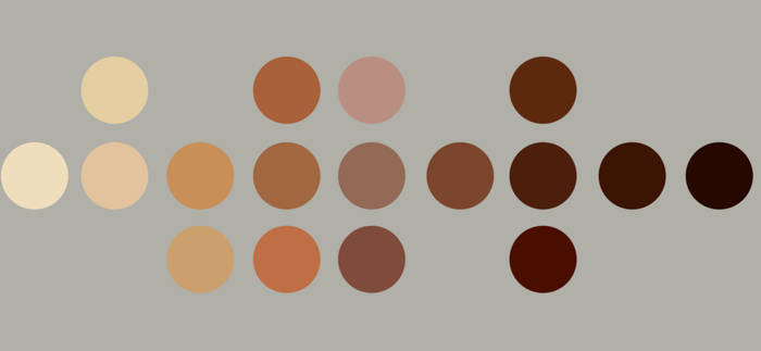 Skin Swatches by Diikae