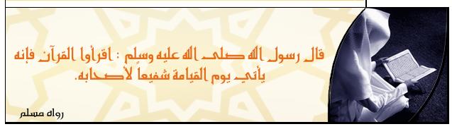 Islam Signature 8 by HalekS