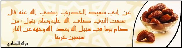 Islam Signature 12 by HalekS