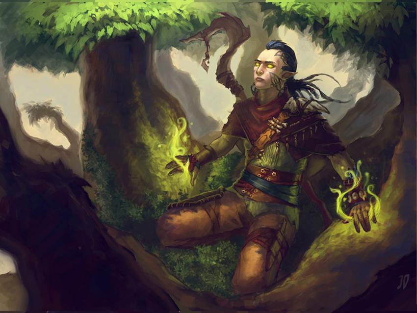 http://orig10.deviantart.net/38de/f/2012/157/7/a/elf_shaman_by_justorangee-d52iaz2.jpg
